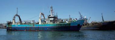 blumar-seafood-supplier