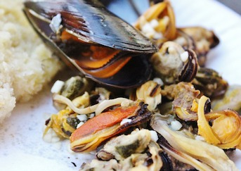 fresh-mussel-seafood