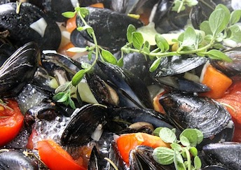mussels-quality-seafood-supplier