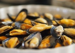 mussels-seafood