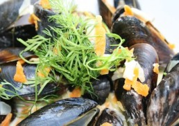 mussels-with-herbs-seafood